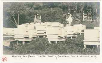 "Postcard, ""Among the Bees,"" North Family, Mount Lebanon, NY, ca. 1905, Shaker Museum 