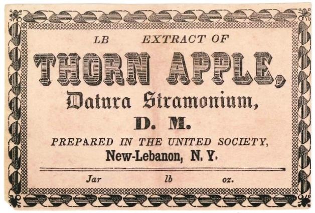 "Label, ""Thorn Apple,DaturaStramonium,Church Family, Mount Lebanon, NY"